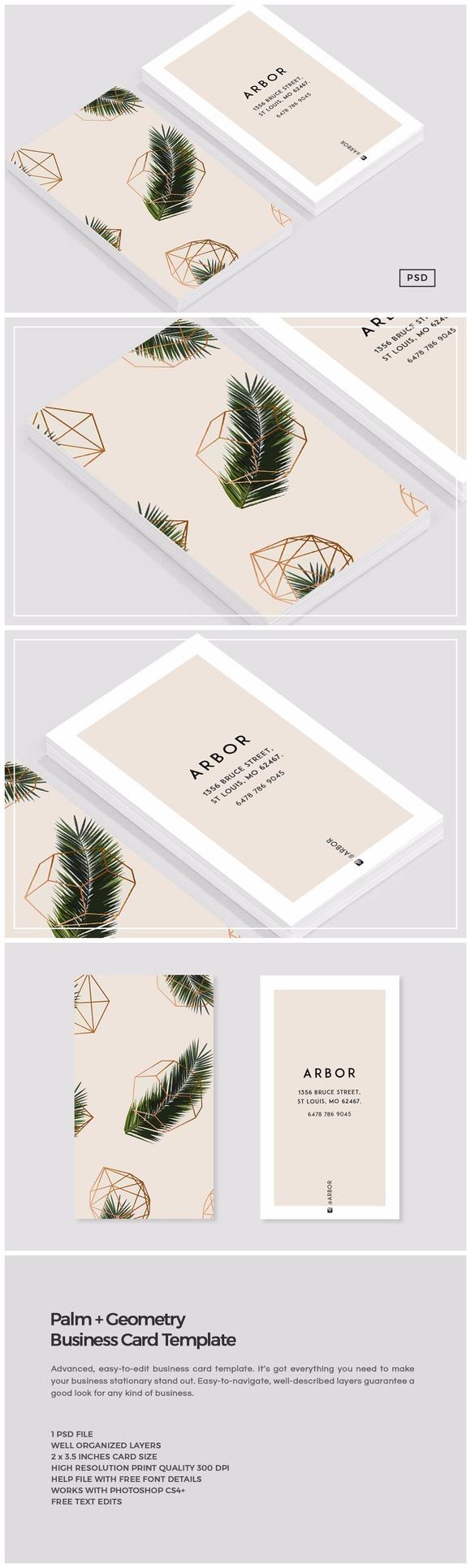 Palm Geometry Business Card