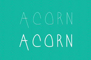 Acorn Regular & Bold