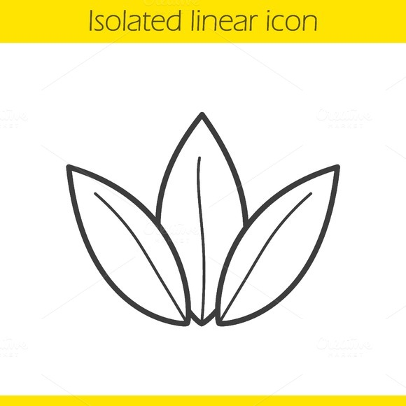 Tea leaves linear icon. Vector - Icons