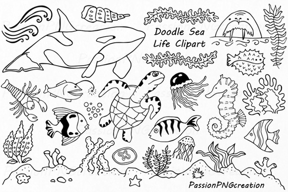 Ocean Life Clipart Black And White