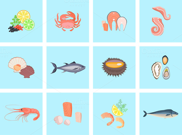 Seafood Set Design Flat Fish