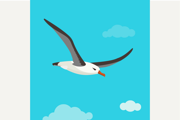 Albatross Is Flying In Cloudy Sky