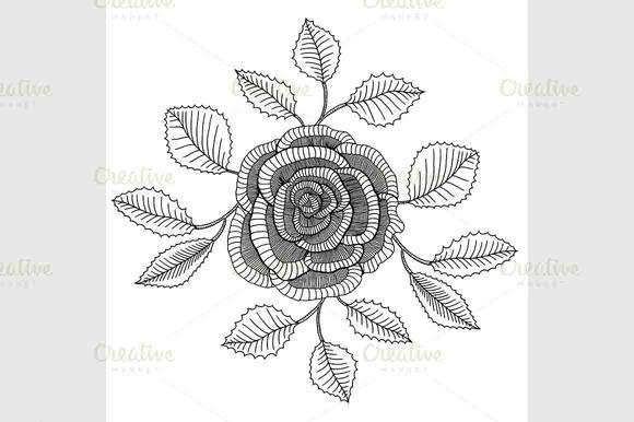 Hand Drawn Garden Roses Flower
