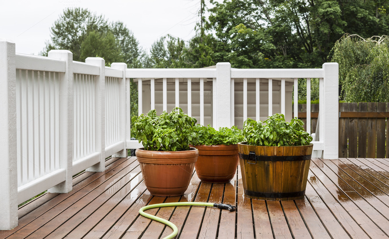 Home Herb Garden On Patio Food Drink Photos On