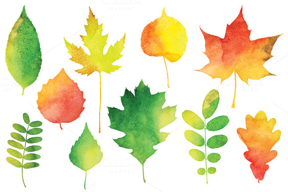 Vector Watercolor Leaves ~ Illustrations on Creative Market: https://creativemarket.com/lubianova/68565-Vector-Watercolor-Leaves