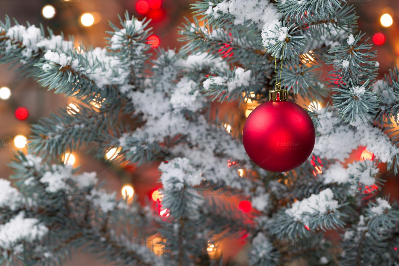 Snow covered Christmas Tree ~ Holiday Photos on Creative ...