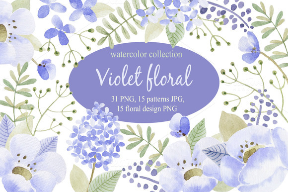 Violet flowers.Watercolor collection - Illustrations
