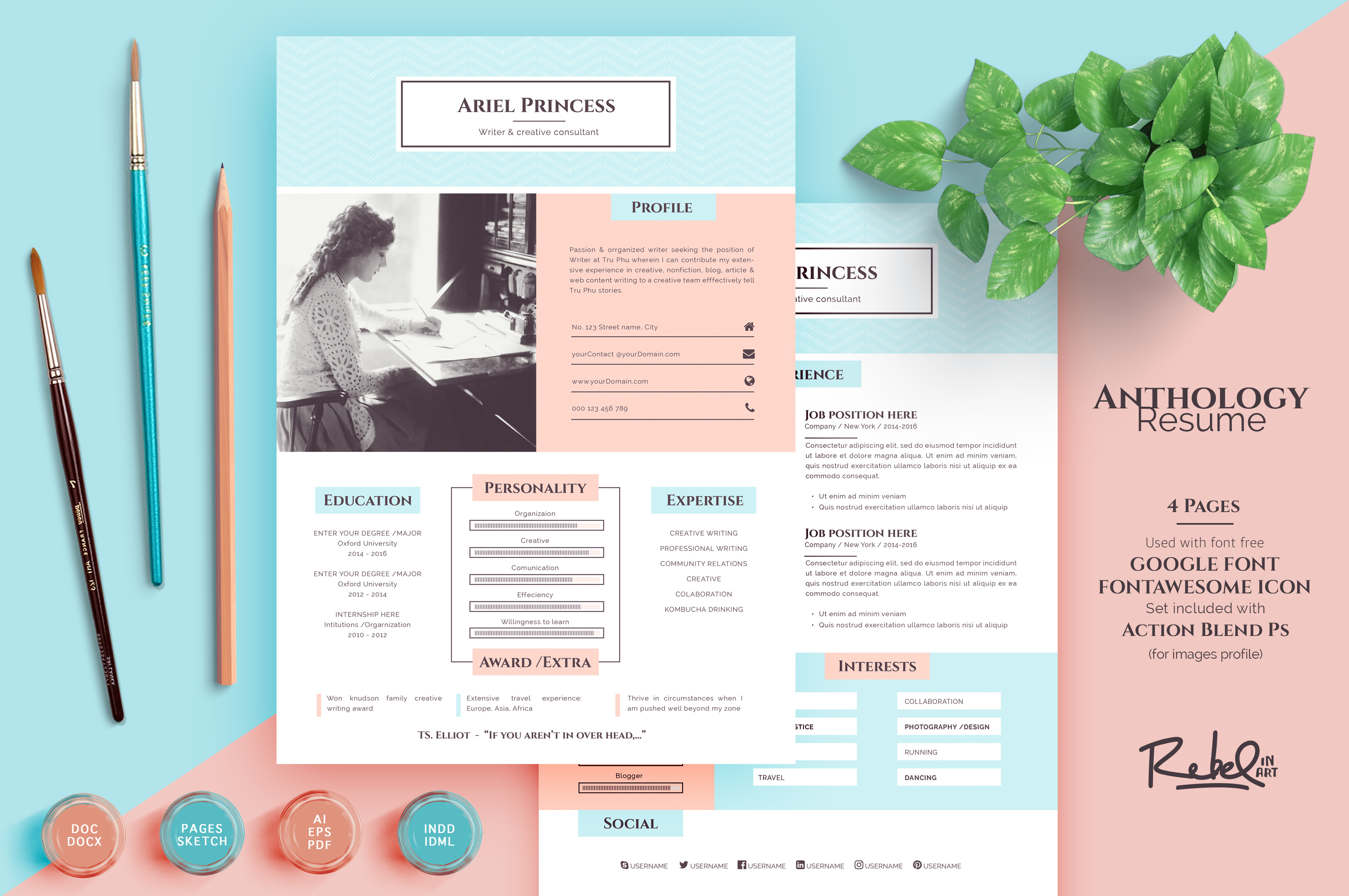 Anthology Resume Cv Sketch Support Resume Templates On