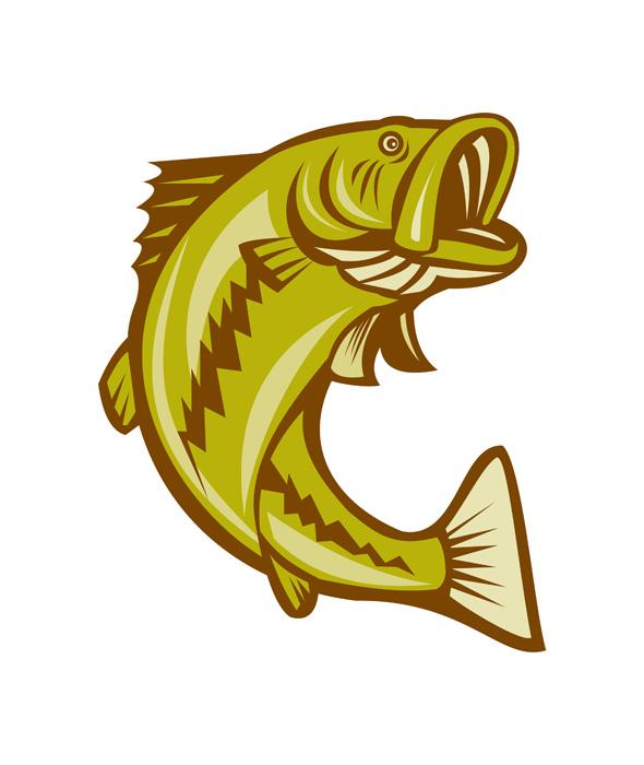 largemouth bass clip art - photo #42