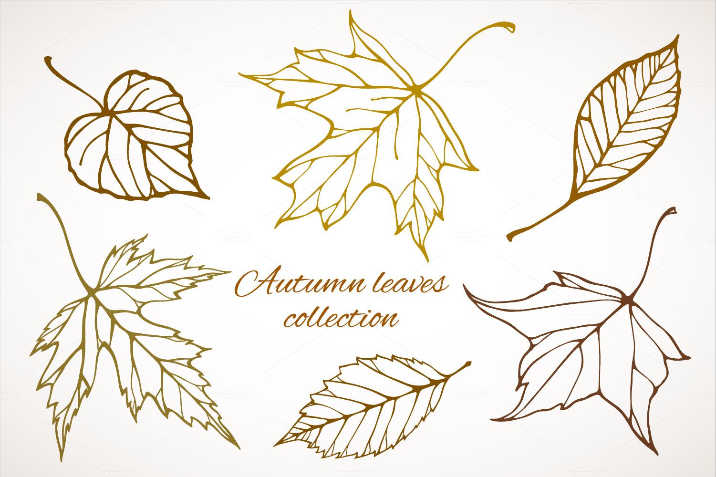 Fall Leaves Patterns Illustrations Illustrations On