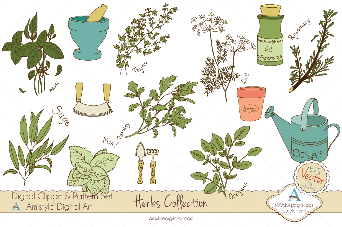 Herbs Collection Clipart Amp Vector Illustrations On