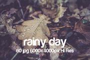 Rainy day-Graphicriver中文最全的素材分享平台