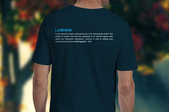 laminin t