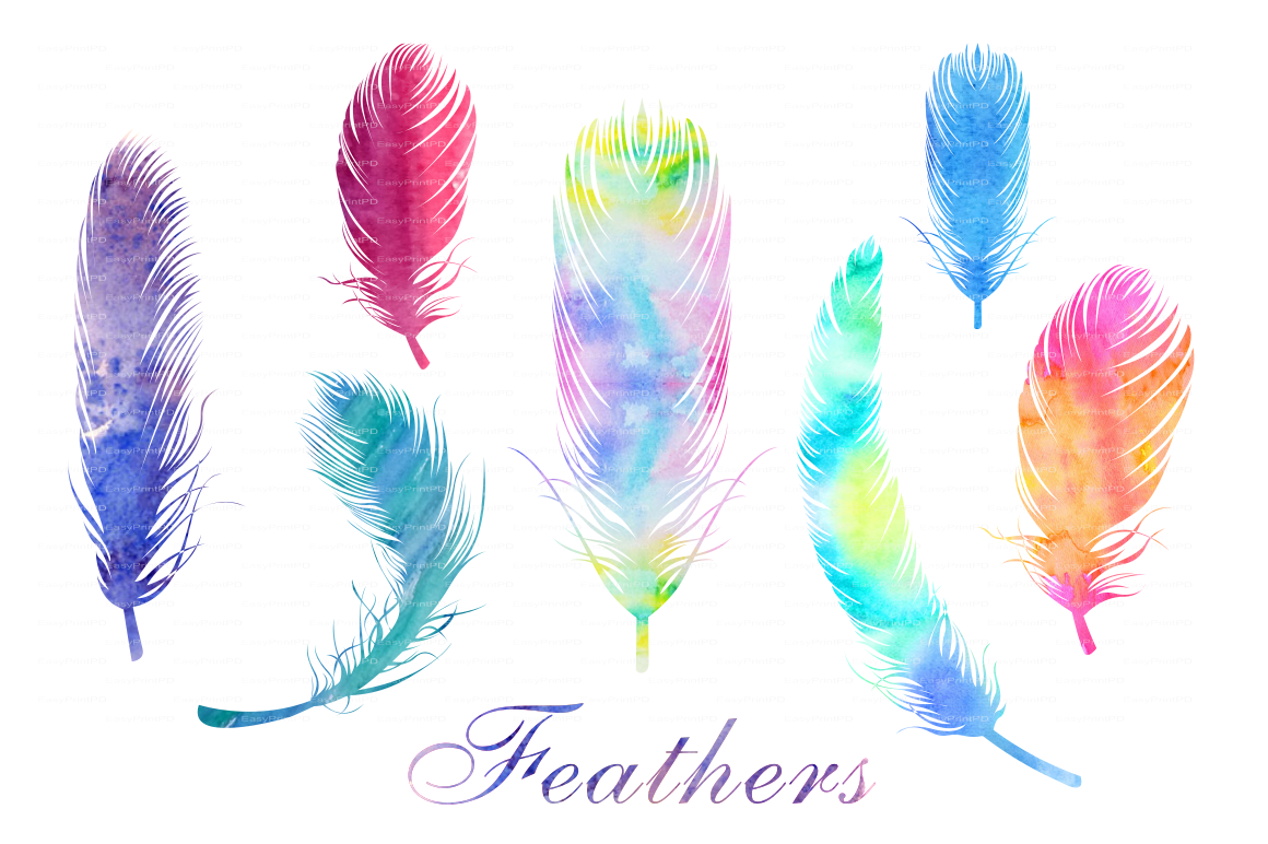 Watercolor Feathers PNG and EPS file ~ Web Elements on Creative Market