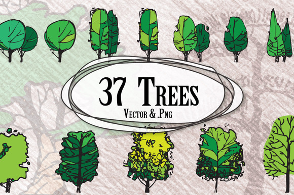 Front Elevation Architecture Of Market : Trees in elevation illustrations on creative market