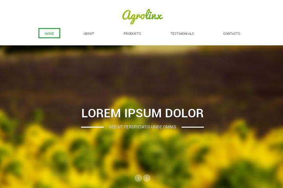 Agrolinx Responsive One Page Theme - Websites - 1