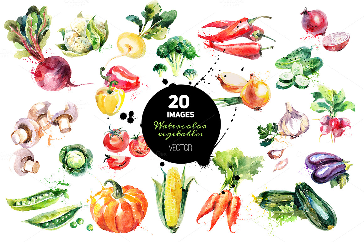 20 Watercolor Vegetables Vector Illustrations On