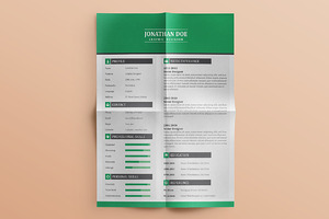 40% Off Flat Resume (3 Pages)
