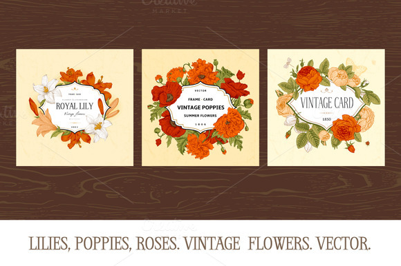 Lilies, Poppies, Roses. Vintage Card - Illustrations