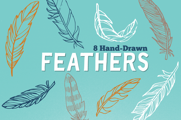 Vector Hand Drawn Feathers