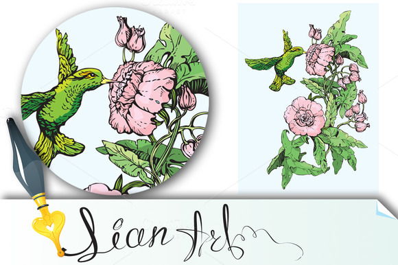 Colibri and flowers. Handdrawn sketc - Illustrations