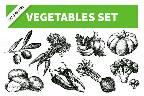Hand Drawn Sketch Vegetables Set 3