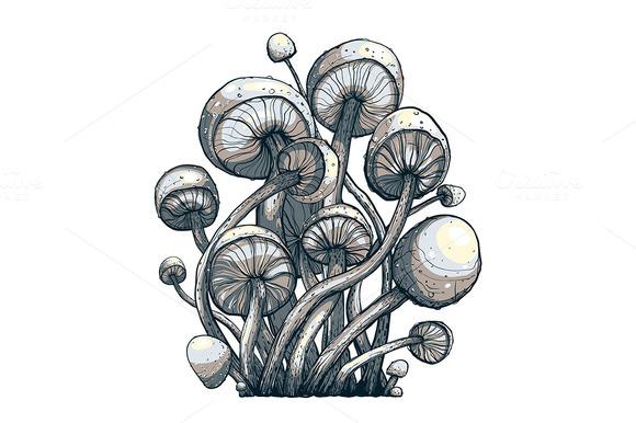 Cramped Toadstool Mushrooms Vector