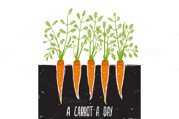 Growing Carrots Scratchy Drawing