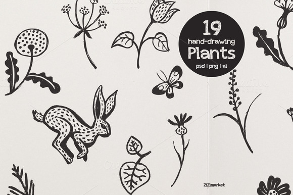 Forest Plants Drawings Forest Plants Drawings