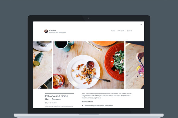 Camera WordPress Theme - Photography