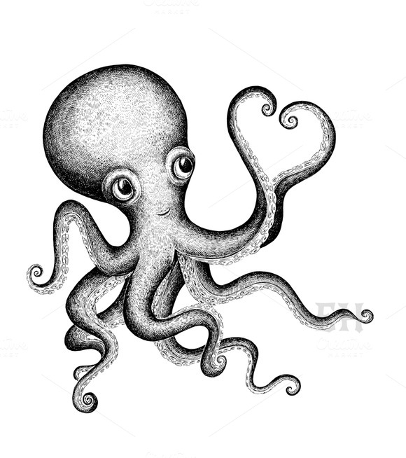 Valentine octopus illustrations on creative market for Cute octopus drawing