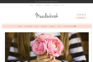 Meadowbrook - Modern Wordpress Theme