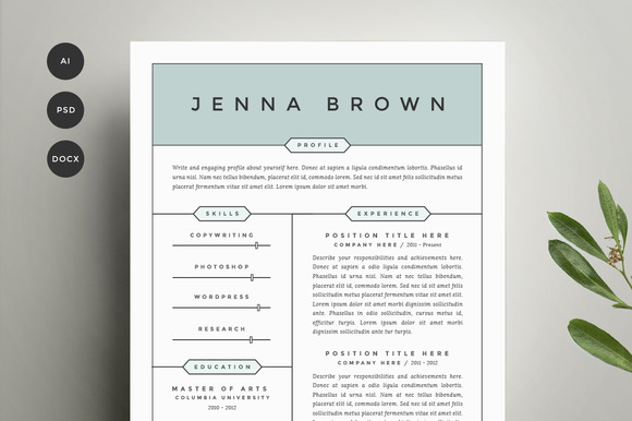 Page Resume Template Free Professional Two Page Resume Template ...