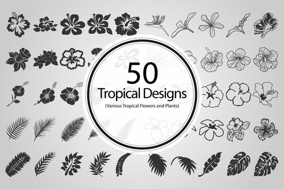 50 Tropical Designs