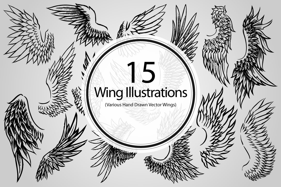 Bird With Open Wings Drawing 15 Wing Illustrations Vector