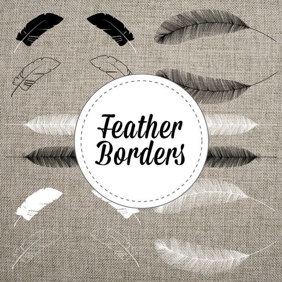 Feather Graphics Vector And PNG