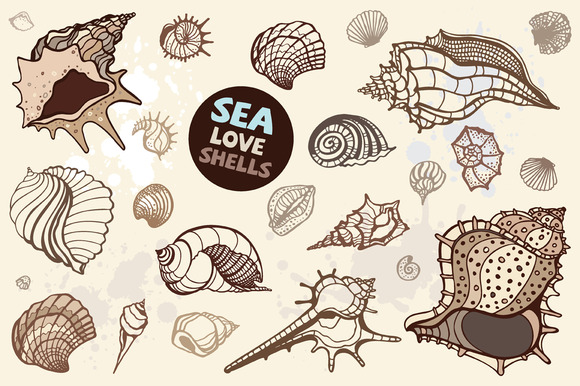 Sea Love Shells. Vector set - Illustrations