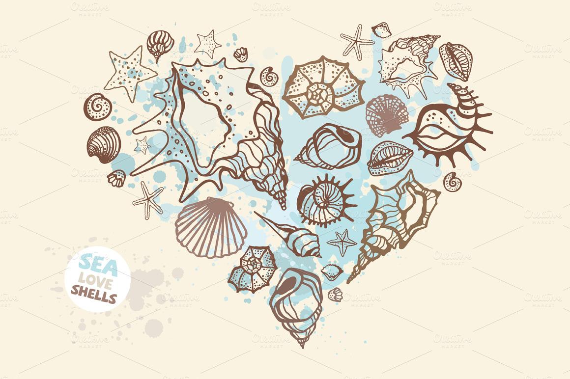 Sea Shell Illustration Sea-shells-set-03-o.jpg?1398602412