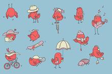 Birdies chilling out - image set