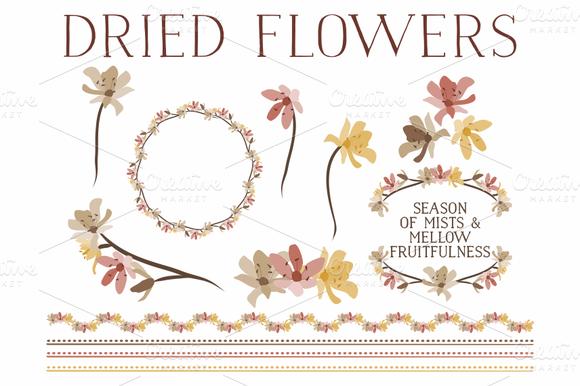 Dried Flowers Laurels