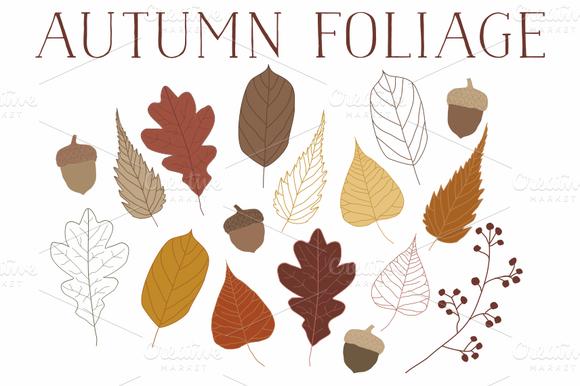 Vector Autumn Leaves Acorns