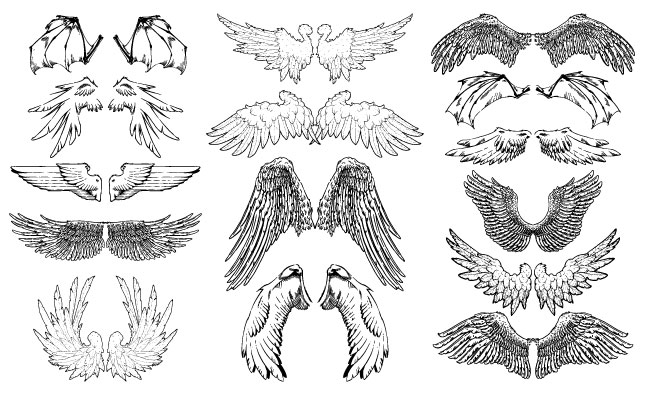 Hand Drawn Wings Vector Pack  Illustrations On Creative -8371