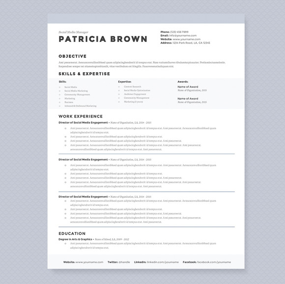 clean resume template pkg