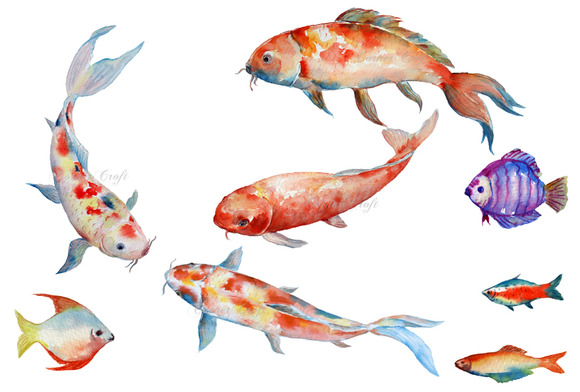 Watercolor fish koi red carp illustrations on creative for Red koi carp