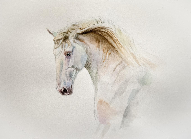 Watercolor Horse Arts Amp Entertainment Photos On Creative