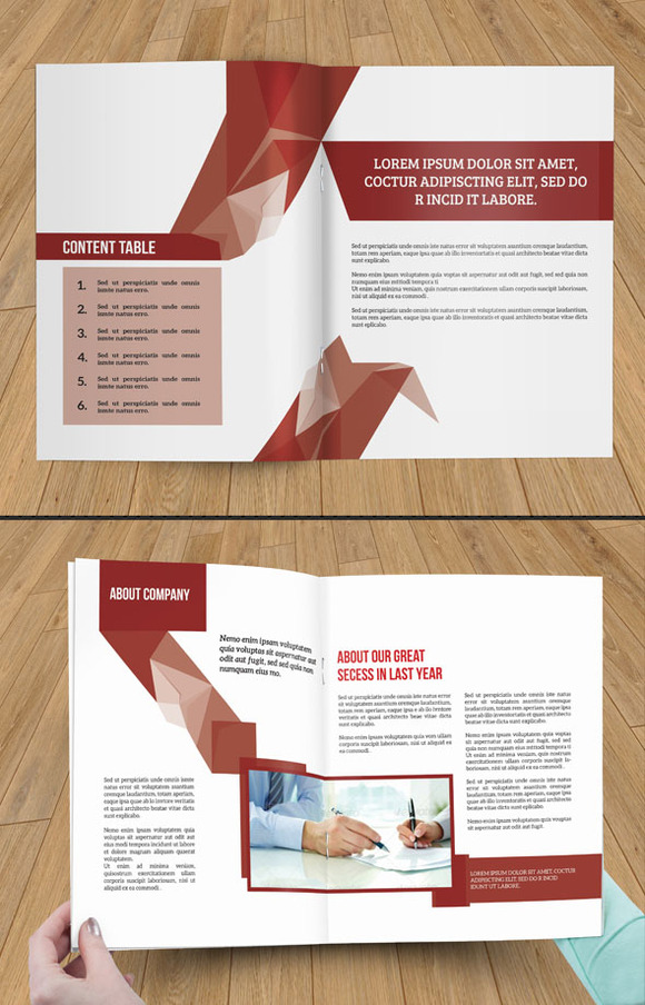 InDesign Brochure