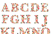 Floral Garden Alphabet Init-Graphicriver中文最全的素材分享平台