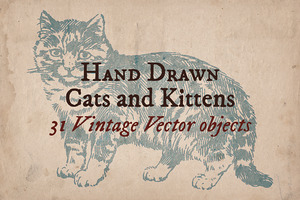 31 Hand Drawn Cats and Kittens