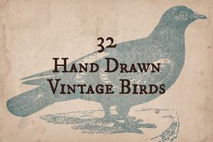 32 Hand Drawn Vintage Birds