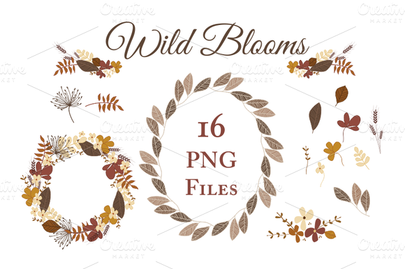 Autumn Leaves And Flowers Vector